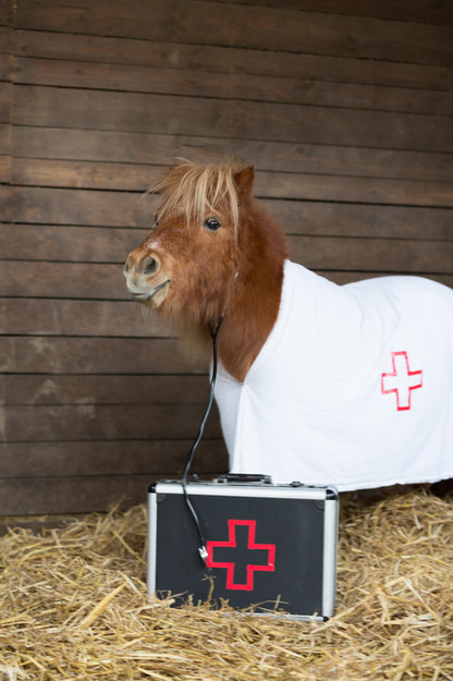 Dr.Pony011.jpg