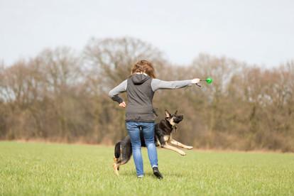 HundeMenschen100.jpg
