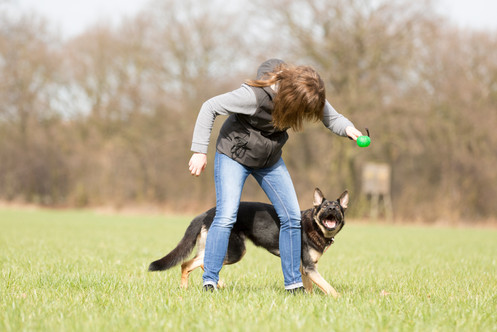 HundeMenschen102.jpg