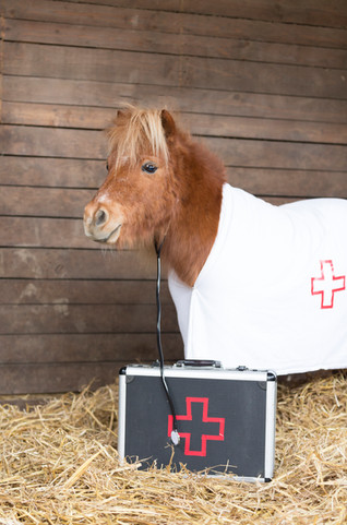 Dr.Pony014.jpg