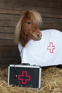 Dr.Pony012.jpg