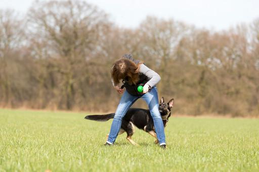 HundeMenschen098.jpg
