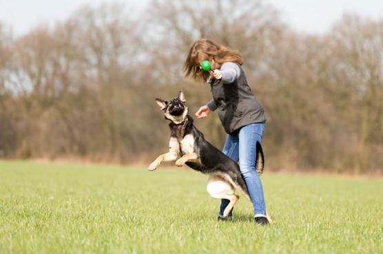 HundeMenschen101.jpg