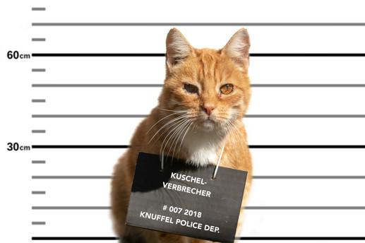 Verbrecher008.jpg