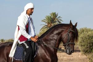 Berber96.jpg