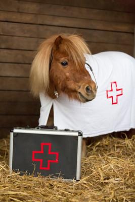 Dr.Pony017.jpg
