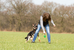 HundeMenschen094.jpg
