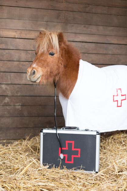 Dr.Pony013.jpg