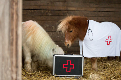 Dr.Pony034.jpg