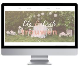 website_TROUW.png