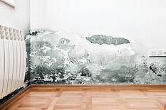 Black-Mould.jpg