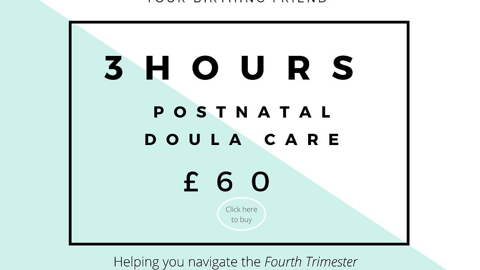 Postnatal Doula Voucher