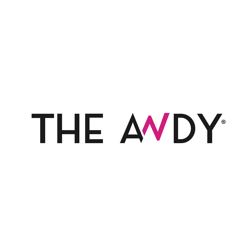 LOGO THE ANDY.jpeg