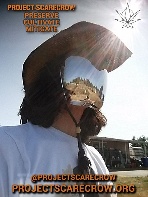 ORIGINAL SCARECROW MASKED GUY - DALE IN