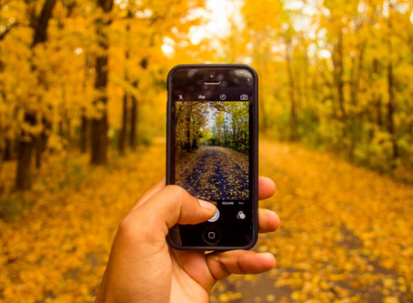 5 Fall Marketing Ideas to Grow Your Business
