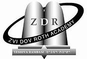 ZVI Logo.jpeg