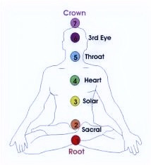 A guide to your 7 chakras and where they are on your body.