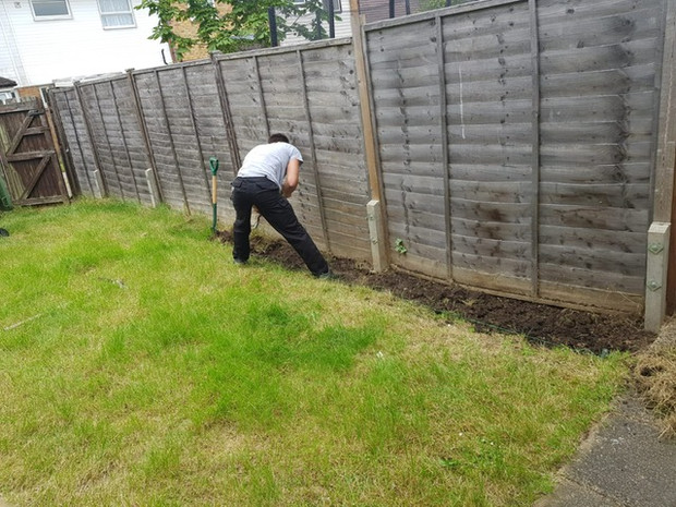 Life on the Hedge - Garden Maintenance Company in Borehamwood