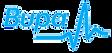 Bupa Healthcare Logo