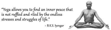 Iyengar Yoga by Steve Lamnt