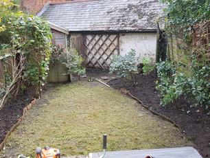 Life on the Hedge Gardening Services Borrehamwood
