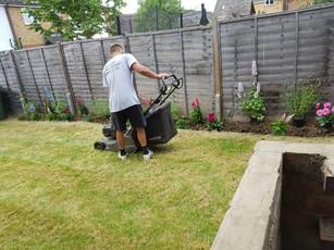 Garden Maintenance in Borehamwood