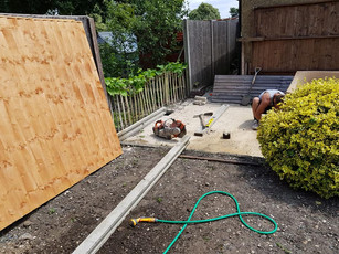 Life on the Hedge - New Fencing for Borehamwood