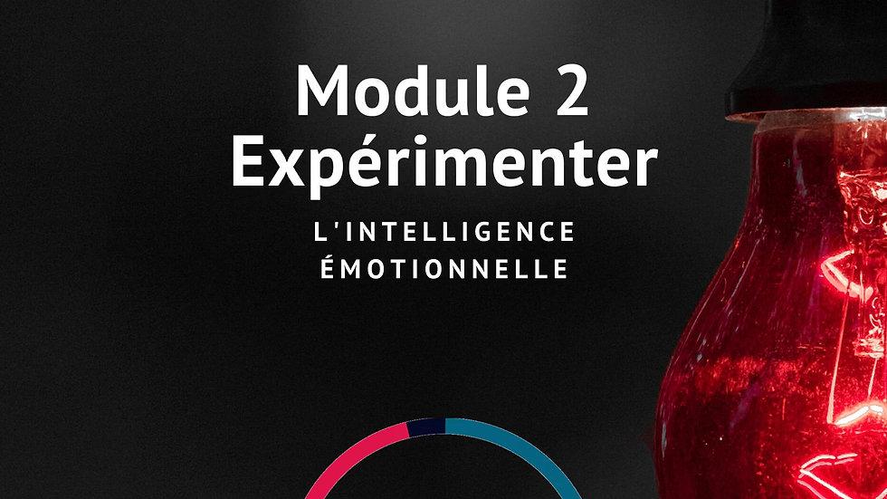 Expérimenter l'Intelligence émotionnelle