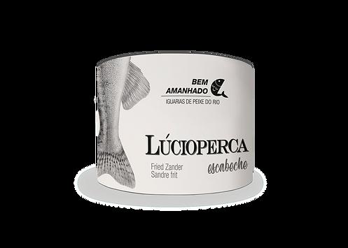 Lúcioperca_02