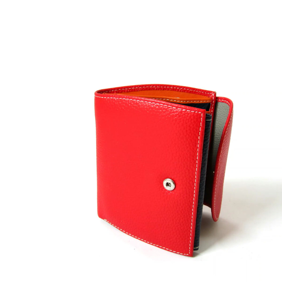 Amica Leather Wallet.mp4