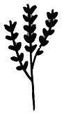 vegetation3.png