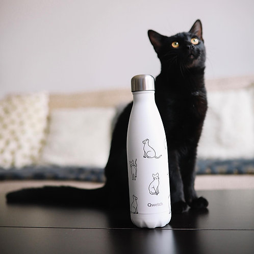 Bouteille isotherme en inox 500 ml PRETTY CATS - Qwetch
