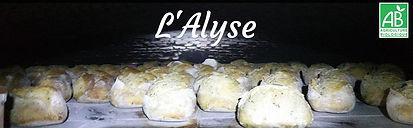 l'alyse.jpg