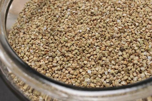 Graine de Sarrasin bio