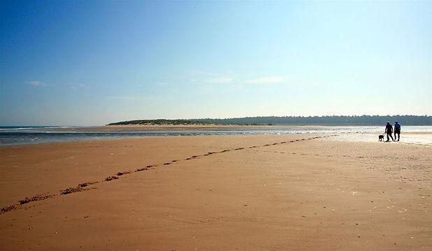 Hoklham_beach05may16132318.jpg