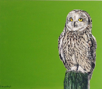 The owl is the wisest of all birds because the more it sees the the less it talks.