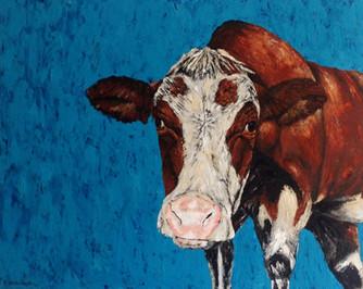 Daar is geen koe of wijf zonder plekje aan haar lijf.