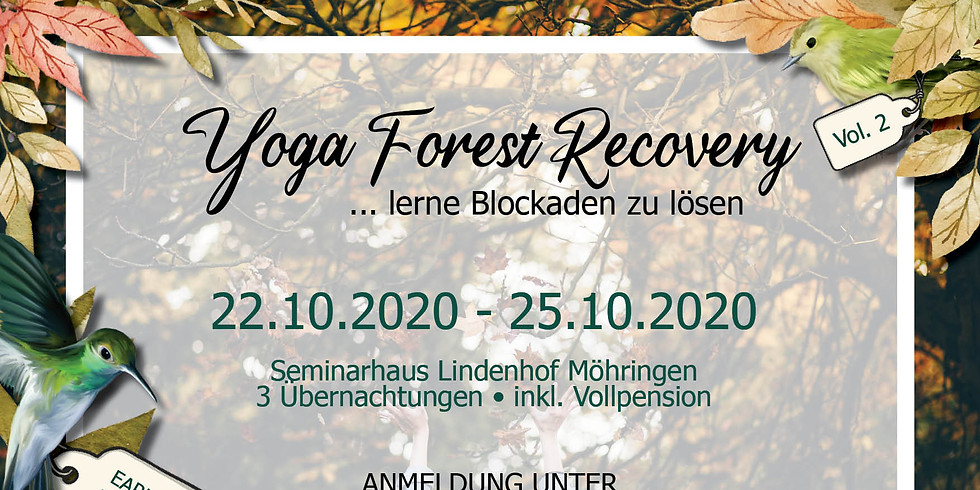 Yoga Forest Recovery #2