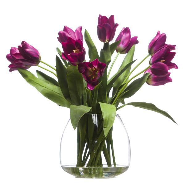 Open Fuchsia Tulips