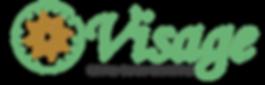 Logotipo Visage Final 2019-01.png