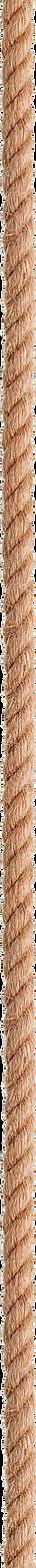 вертикальный канат.png