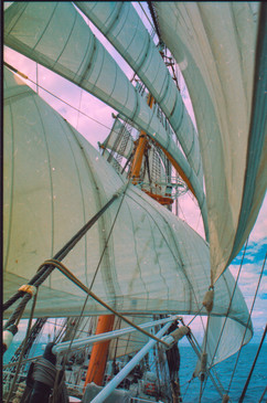 Когда паруса «Крузенштерна» шумят над мо