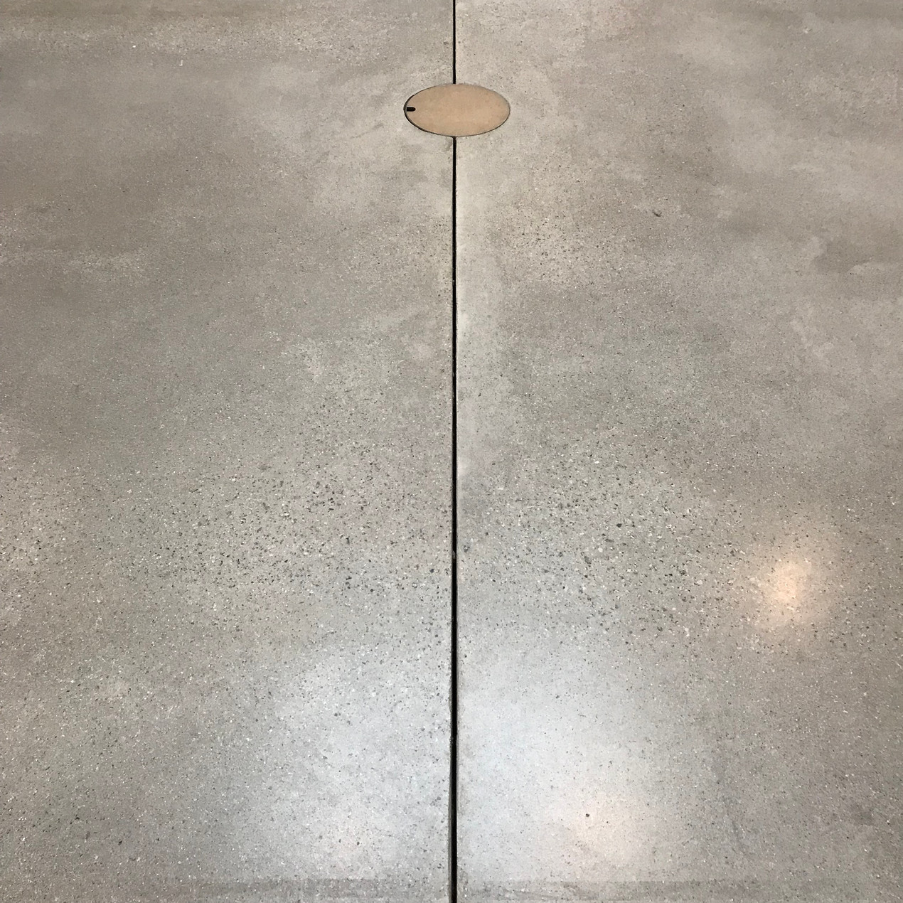 "Polished concrete floors with exposed ""sparkly"" aggregate, representing the beach outside, run throughout the new extension."