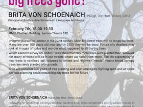 Open Lecture: Brita Von Schoenaich - Where have all the big trees gone? 07/02/2019
