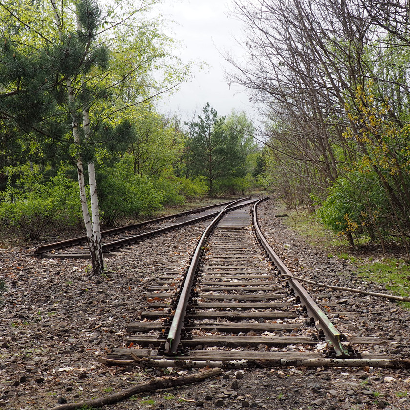 A severed and overgrown railway sidings has been saved from redevelopment and injected with new cultural life and meaning