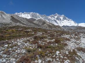 Himalayan drought as plants raise temperatures