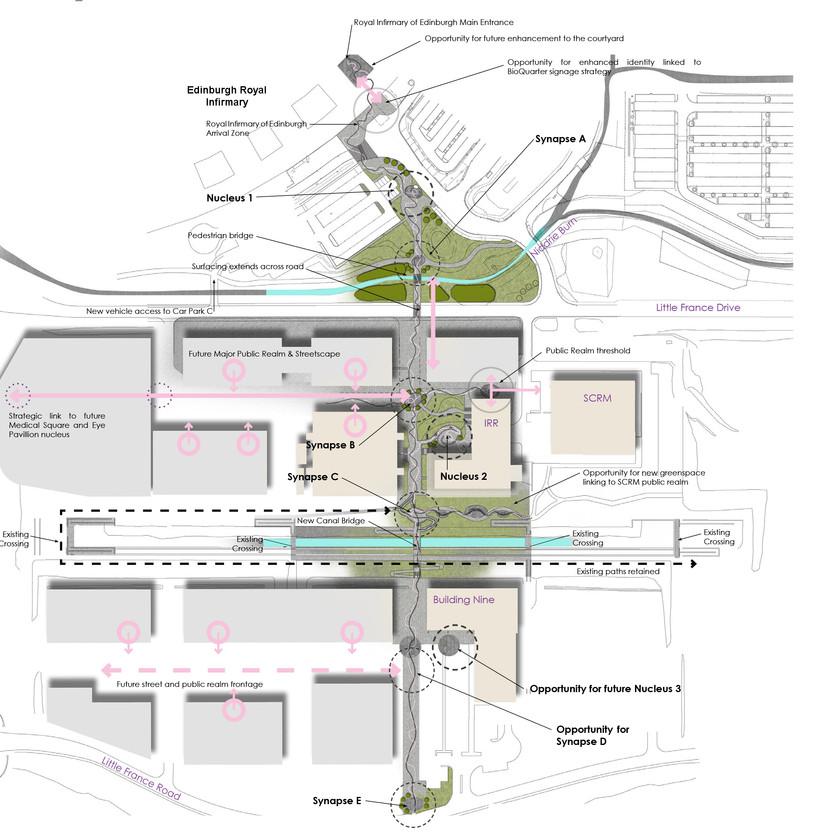 Public Consultation of a coal mine restoration community woodland project, Wales