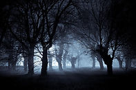 spooky-night-12785386.jpg