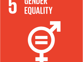 What You Should Know: SDG5