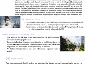 Air Pollution Parliamentary One Pager